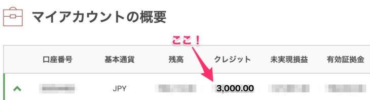 3000円のクレジット確認